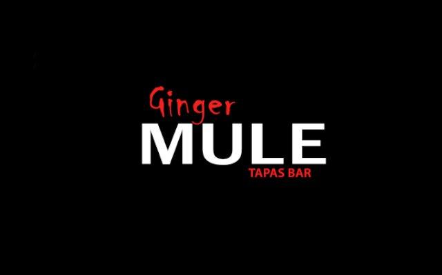 GingerMuleLogo